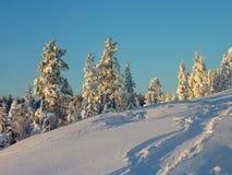 krajobrazowy śnieżny Zdjęcia Royalty Free