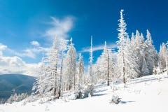 krajobrazowy śnieżny Fotografia Royalty Free