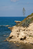 krajobrazowy śródziemnomorski zdjęcia royalty free