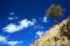 krajobrazowy atlanta środek Zdjęcia Royalty Free