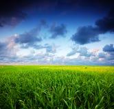krajobrazowy burzowy lato Obraz Royalty Free