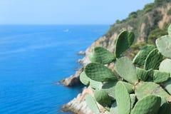 Krajobrazowy Costa Brava Obrazy Royalty Free