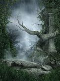 krajobrazowy dżdżysty drzewo Obraz Stock