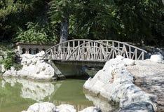 Krajobrazowy drewniany most przez jezioro Obrazy Stock