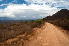 krajobrazowy drogowy dziki Obrazy Stock