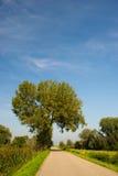 krajobrazowy drogowy lato Zdjęcie Royalty Free