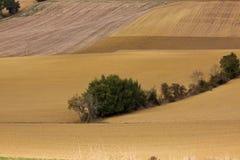 krajobrazowy Francuza późne lato Fotografia Stock
