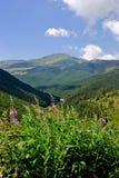 krajobrazowy górzysty zdjęcie royalty free