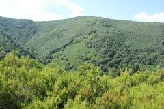 Krajobrazowy Galicia Fotografia Stock
