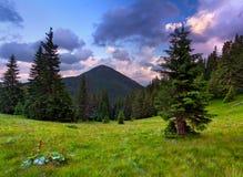 krajobrazowy halny lato Obrazy Stock