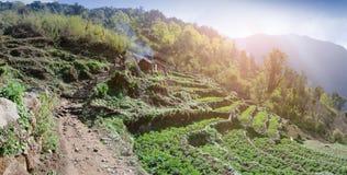 krajobrazowy halny panoramiczny krajobrazowa Himalaje góra Obraz Stock