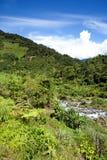 krajobrazowy halny tropikalny Zdjęcie Stock