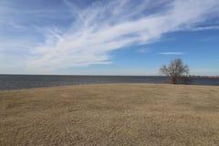 Krajobrazowy jezioro przy parkiem Obraz Royalty Free