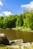Krajobrazowy las i rzeka Fotografia Royalty Free