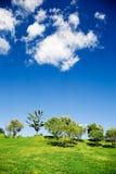 krajobrazowy lato Obrazy Royalty Free
