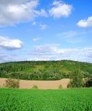 krajobrazowy lato Zdjęcie Royalty Free