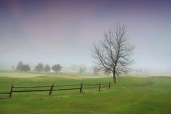 krajobrazowy mglisty Fotografia Royalty Free