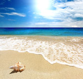 krajobrazowy morze Zdjęcie Royalty Free