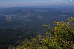 Krajobrazowy Mpumalanga Południowa Afryka od cudu widoku punktu obserwacyjnego Obraz Royalty Free