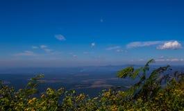 Krajobrazowy Mpumalanga Południowa Afryka od cudu widoku punktu obserwacyjnego Obraz Stock