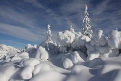 krajobrazowy śnieg Fotografia Royalty Free