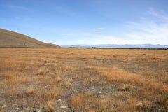 krajobrazowy nowy Zealand Fotografia Stock