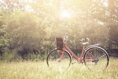 Krajobrazowy obrazka rocznika bicykl z lato trawy polem Fotografia Royalty Free