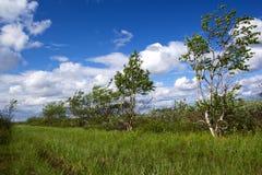 krajobrazowy północny Zdjęcia Stock