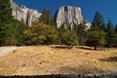krajobrazowy pictur sceniczny wibrujący Yosemite fotografia royalty free