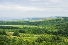 Krajobrazowy plateau Las w dolinie zdjęcia stock