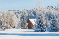 Krajobrazowy pobliski dom malarz Repin. Obraz Royalty Free