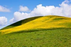krajobrazowy pokojowy Obrazy Stock