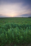krajobrazowy Poland obraz stock