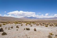 krajobrazowy powulkaniczny Zdjęcia Royalty Free