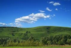 krajobrazowy przeglądu lato Obraz Royalty Free
