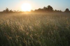 krajobrazowy ranek Obraz Royalty Free