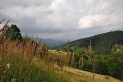 krajobrazowy Romania Fotografia Stock
