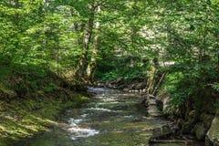 krajobrazowy Romania Obraz Royalty Free