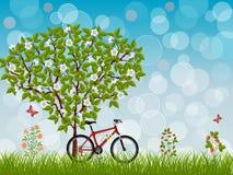krajobrazowy roweru lato Obraz Royalty Free