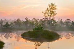 krajobrazowy sceniczny Fotografia Royalty Free