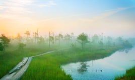 krajobrazowy sceniczny wschód słońca Fotografia Stock