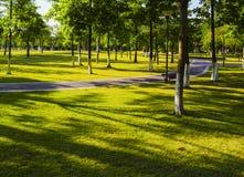 Krajobrazowy spadku parka światło słoneczne Zdjęcia Stock