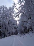 Krajobrazowy Suhl/Niemcy zdjęcia royalty free