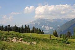 krajobrazowy szwajcar Zdjęcie Royalty Free