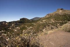 krajobrazowy Tenerife Obrazy Royalty Free