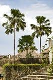 krajobrazowy tropikalny Fotografia Royalty Free