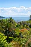 krajobrazowy tropikalny Zdjęcia Royalty Free