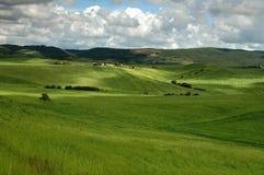 krajobrazowy Tuscany Obraz Stock