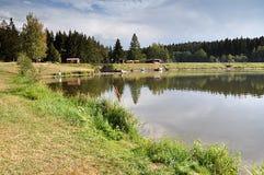 Krajobrazowy Vysocina, republika czech, Europa Obrazy Royalty Free