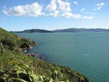 krajobrazowy Wellington Fotografia Royalty Free